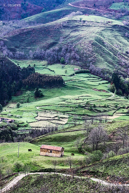 Valle de Cabu rniga, Canon EOS 500D, Canon EF-S 55-250mm f/4-5.6 IS