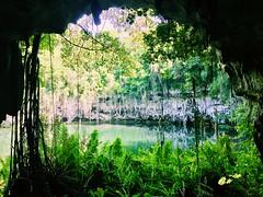 A wonderful vacation in the Dominican Republic #dominicanrepublic #dominicana #puntacana #atlanticocean #alekseychipigo #nature #carribeansee #vocation #ocean #beautifull #photo #iphonephoto #santodomingo