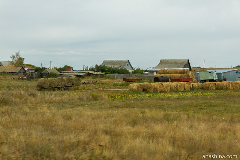 Деревня, Саратовская область
