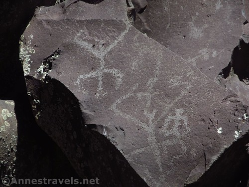 Petroglyphs - I'm not sure what these are, but they look like giant flying grasshoppers to me. At Nampaweap Rock Art Site on the Arizona Strip