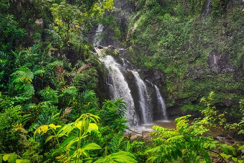 roadtohana hawaii hi maui usa united states waterfall lush forest water nature landscape rainforestr falls upperwaikanifalls threebears waikani