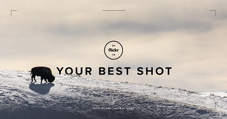 Ready, set, submit! Your Best Shot 2018 starts now. | by Flickr