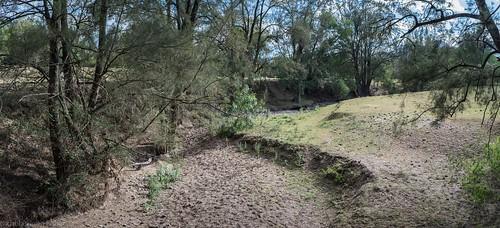 Kingdon Ponds