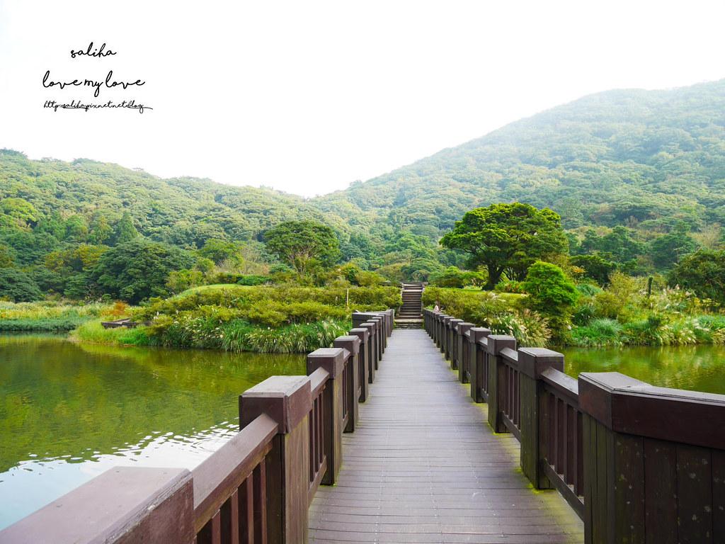 台北陽明山一日遊踏青景點推薦大屯自然公園 (11)