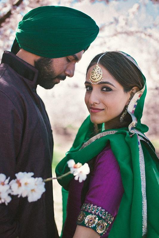Punjabi Suit collection - 1