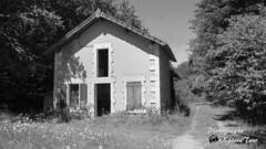 Maison forestière 2018
