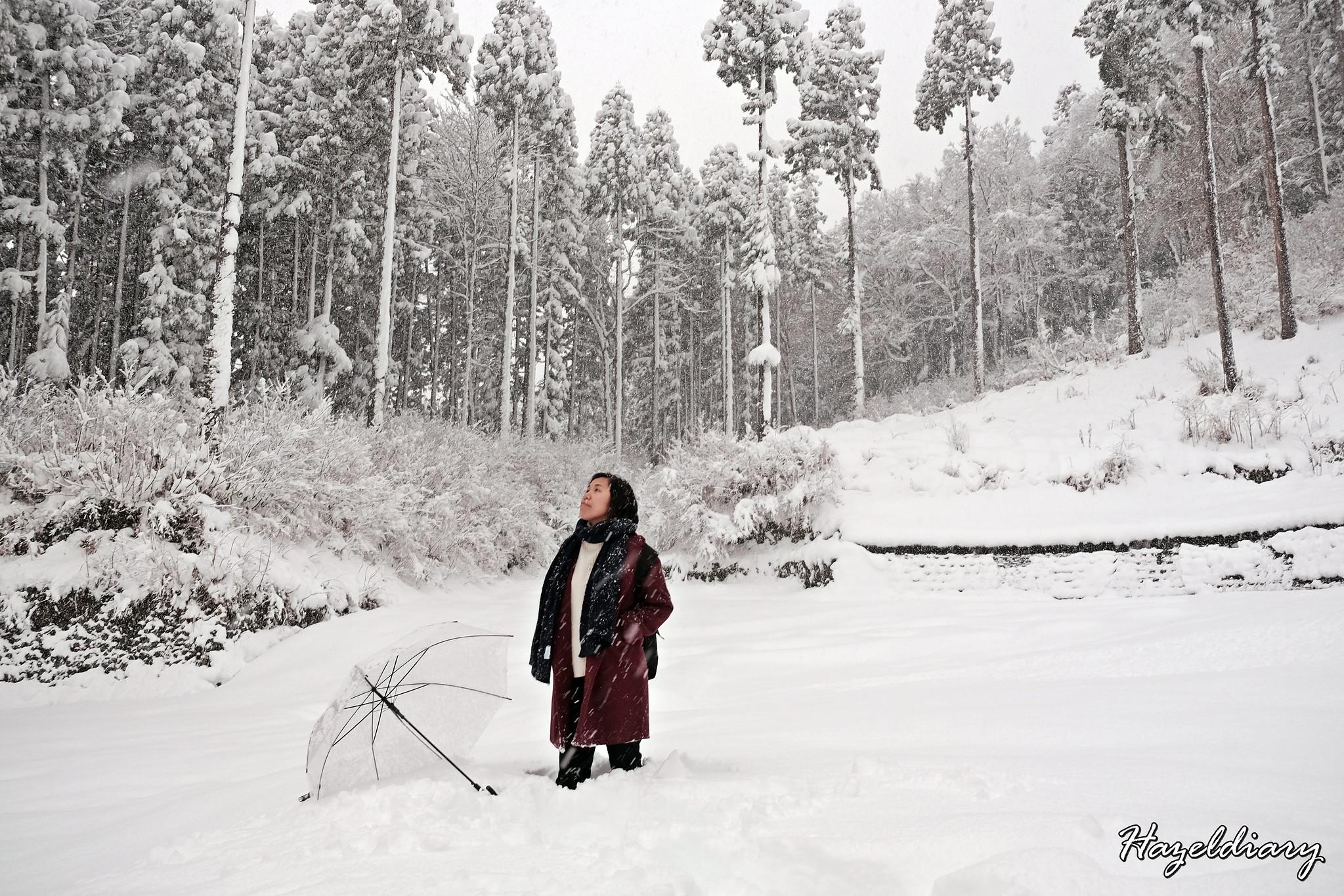 Echigo Yuzawa Japan-Hazeldiary-5