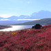 Denali Wonder Lake.jpg by sandm0nkey