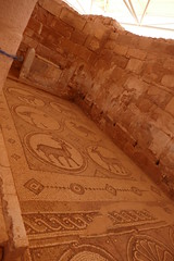 Byzantine Church & Mosaics at Petra (9)