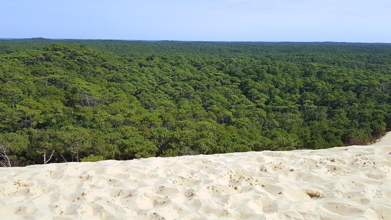 Dune du Pilat Francia Burdeos dune du pilat - 31094139247 77581b4456 h - Dune du Pilat, la duna de arena más alta de Europa