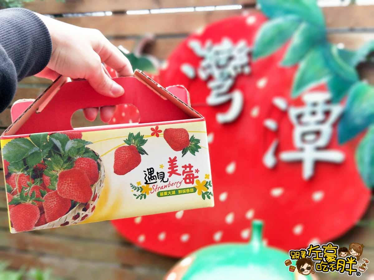 苗栗縣大湖灣潭玫瑰草莓園-6