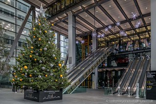 Leadenhall Building Entrance Christmas Tree-0314 | by Splendid What