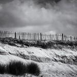 27. Juuli 2018 - 17:45 - dune.fence