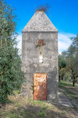Valle di Maddaloni (CE), 2018, I Ponti della Valle o Acquedotto Carolino. Torrini di sfiato.