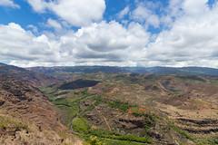 Waimea Canyon State Park Ausblick Hawaii