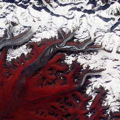 Like rivers of liquid water, glaciers flow downhill, with tributaries joining to form larger rivers. Original from NASA. Digitally enhanced by rawpixel.