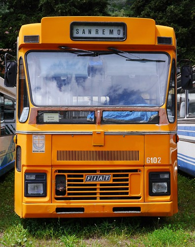 old-bus-motorhomes from e-cars.sale - fiat