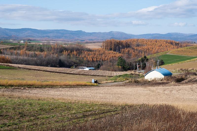 美瑛 新栄の丘から見下ろす畑