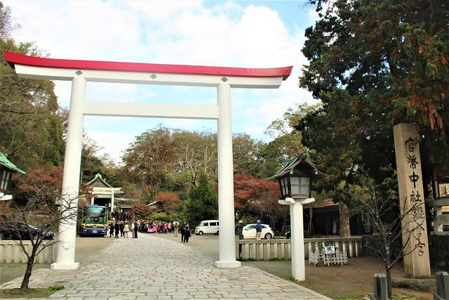 kamakuragu001