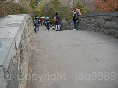Gapstow Stone Arch Bridge (1896) over The Pond, Central Park, New York City