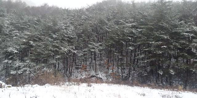 시어동 겨울 진경산수화