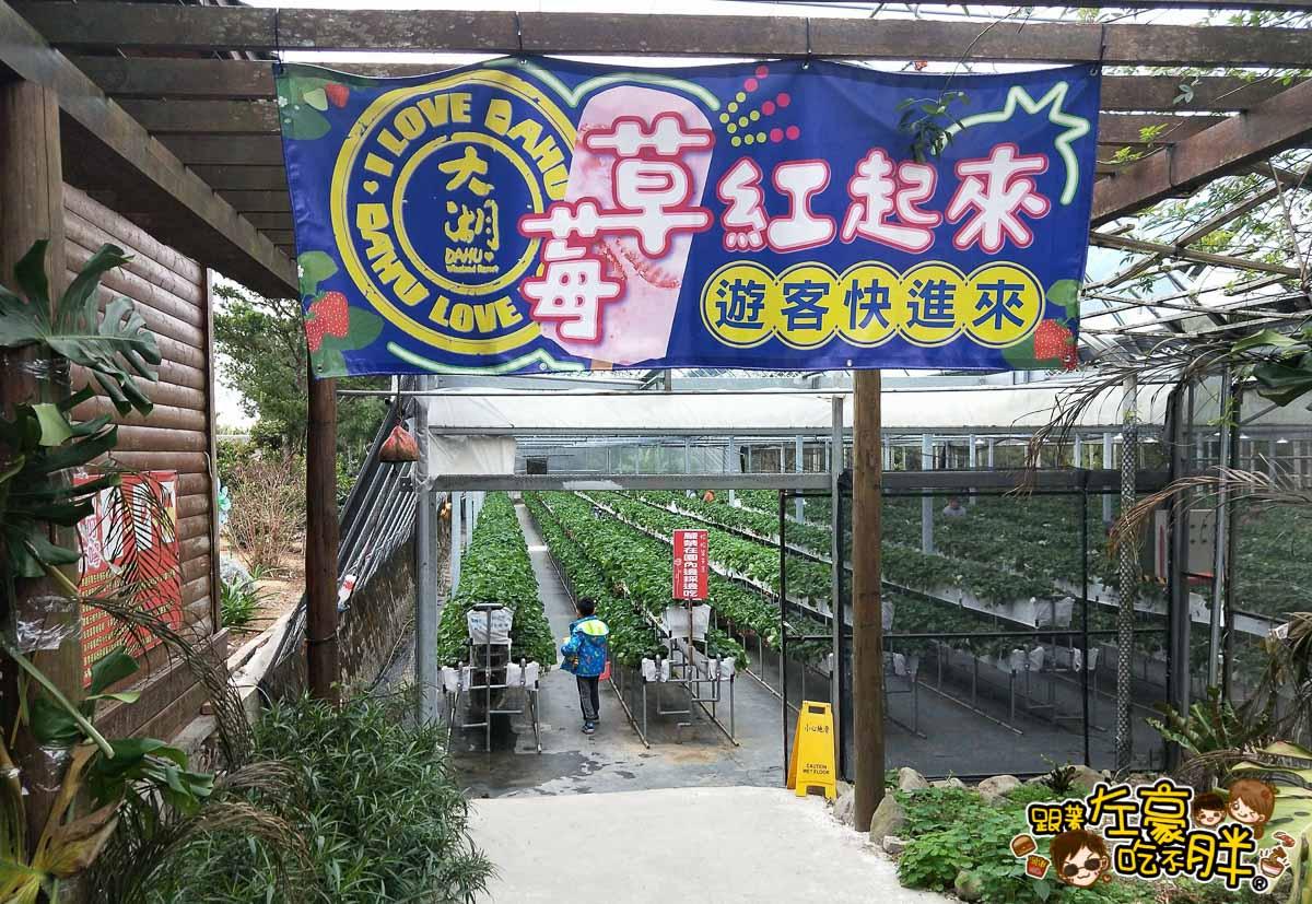 苗栗縣大湖灣潭玫瑰草莓園-31