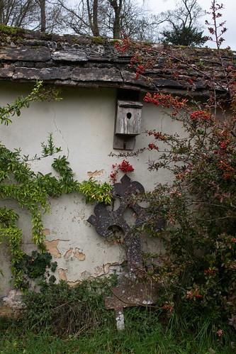 Churchyard wall, Iwerne Courtney