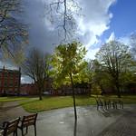 Winckley Square sunlight