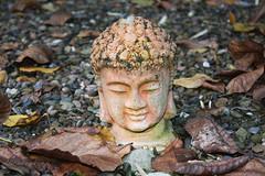 Und Buddha lächelt