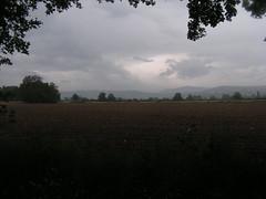 20080515 22944 0905 Jakobus Baum Feld Weite Hügel (2) - Photo of Saint-Sixte
