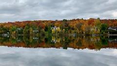 Flambée de couleurs le long du Lac Memphrémagog