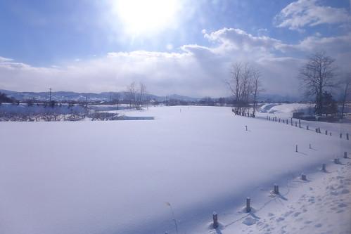 津軽平野を走り、沿線は米どころ。冬は一面の雪原になる