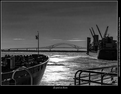 Le port en hiver