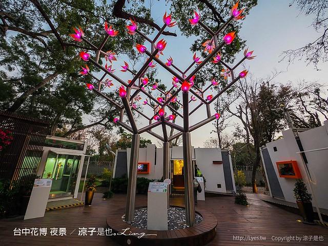 台中花博 夜景 3