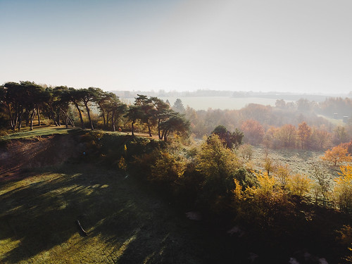 drone winter light sunrise sun shadows trees nature forest landscape dji mavicair mavic air manuelekphoto drönare skog natur landskap husiemosse husie mosse vinterljus skuggor dimma mist