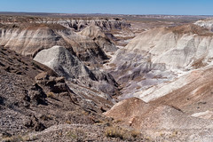 Blue Mesa trail in Arizona's Petrified Forest National Park / Painted Desert on a sunny summer day, showing the rock's beautiful colors