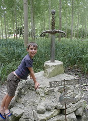 Excalibur (Jasper) - Photo of Migré