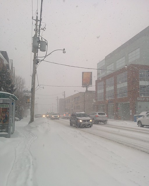 Visibility of less than one block #toronto #dlws #dovercourtvillage #dupontstreet #white #winter #snow #snowstorm
