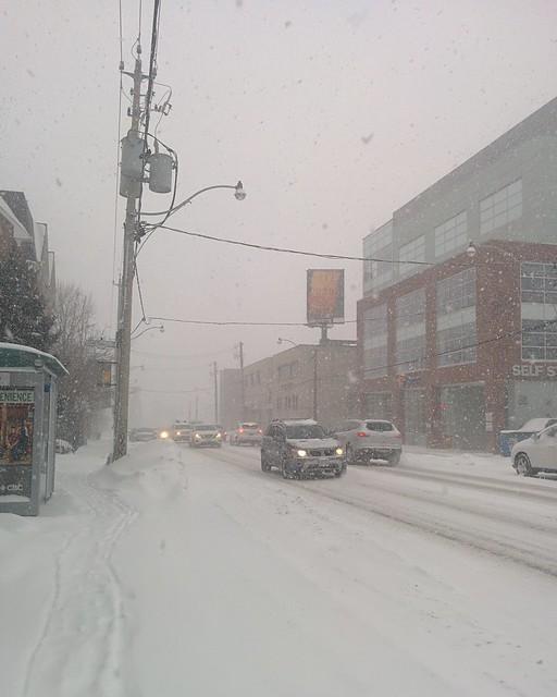 Visibility of less than one block #toronto #dlws #dovercourtvillage #dupontstreet #white #winter #snow #snowstorm