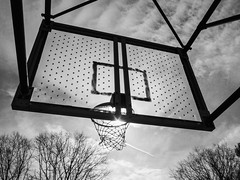 Basketball Hoop Winter Silhouette - Black and White; Manhasset, New York