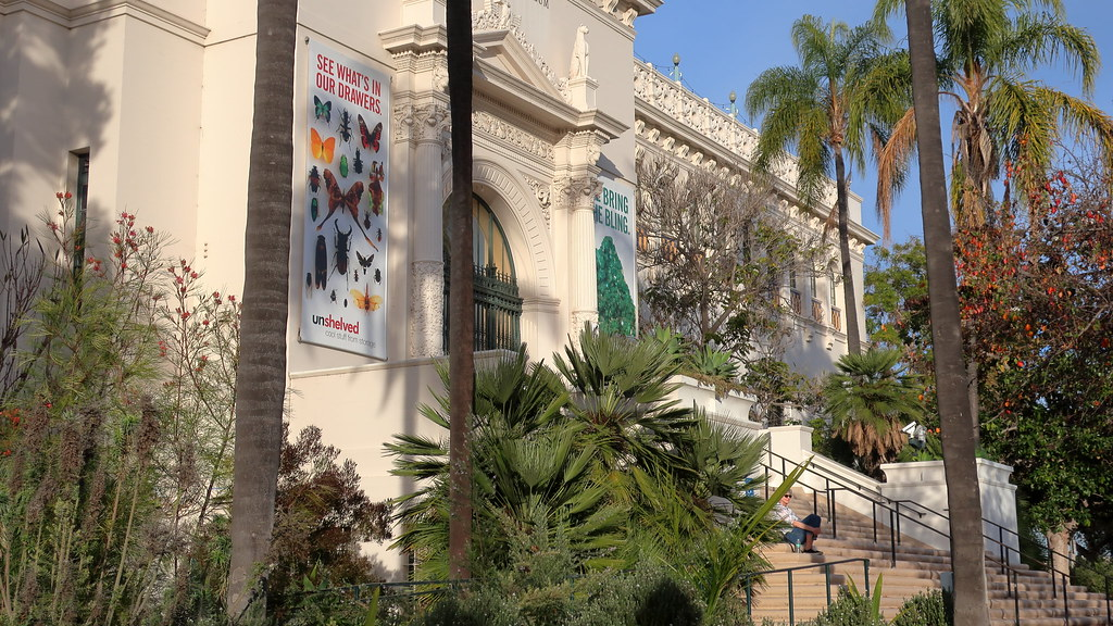 190124 168 San Diego, Balboa Park - San Diego Natural History Museum