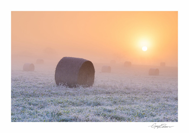 Frosted Bales II