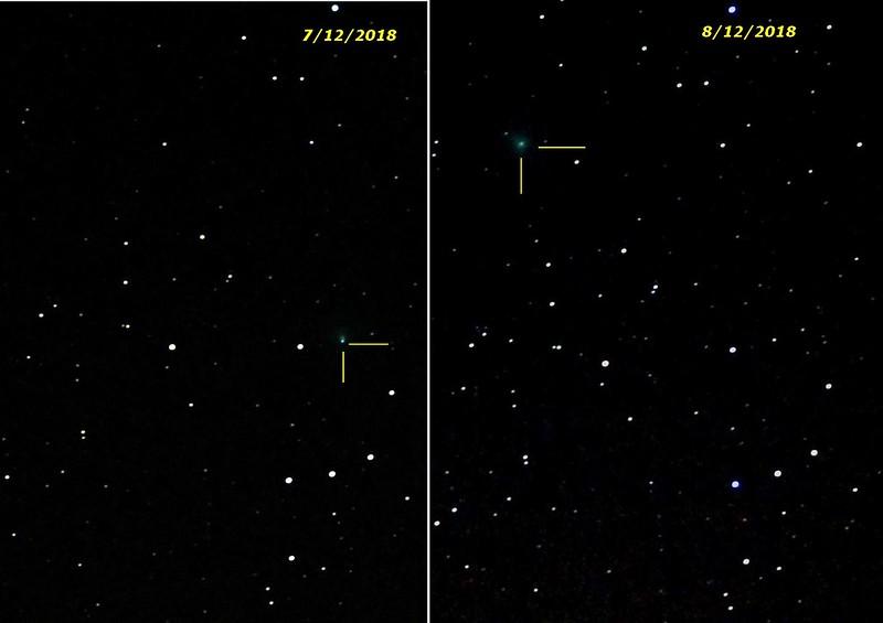 Comète 46P/Wirtanen en décembre 2018 44486151570_af94c49492_c