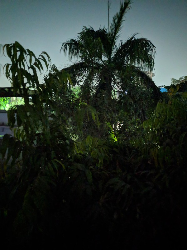 Xiaomi Poco F1 - 1 (With Night Sight)