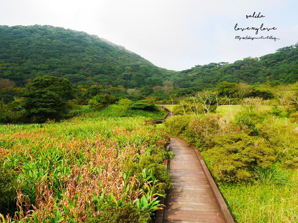 台北一日遊陽明山私房秘境推薦好玩好走親子景點大屯自然公園 (7)