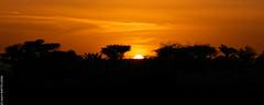Sunset (Adrar, Mauritanie)