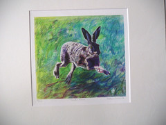 Joyful Hare print mounted