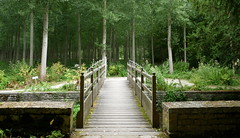 Bridge - Photo of Villeneuve-la-Comtesse