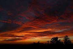 2018_12_14_sb-sunset_108