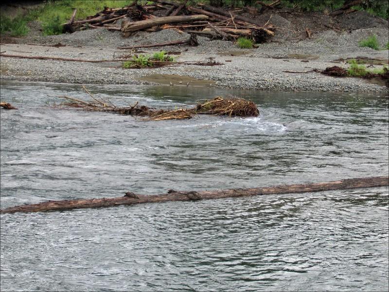 Одна из камчатских рек